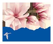 Magnolija – Weyergans veselības un skaistuma centrs